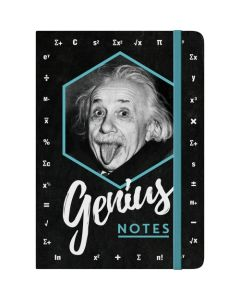 Nostalgic-Art Notebook Einstein - Genius Notes